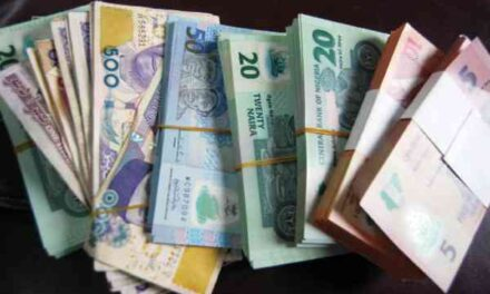Naira seen on the ropes next week, as oil dollar sales dry up
